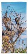 Great Black Cormorants Colony - Danube Delta Beach Towel