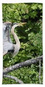 Great Blue Ballet Beach Towel
