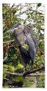 Great Blue Heron In A Tree Beach Towel