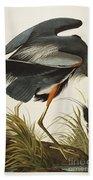 Great Blue Heron Beach Towel by John James Audubon