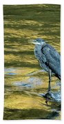 Great Blue Heron On A Golden River Vertical Beach Towel