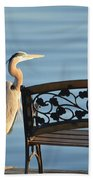 Great Blue Heron....resting My Leg Beach Towel