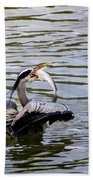 Great Blue With A Drum Beach Towel