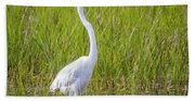 Great Egret In The Spring  Beach Sheet