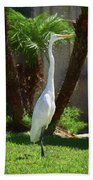 Great Egret Just Strutting Impressionism 1 Beach Towel