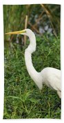 Great Egret Walking Beach Towel