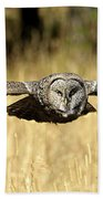 Great Gray Owl In Flight Beach Towel
