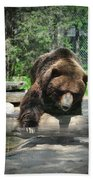 Great Grizzly's Beach Towel