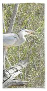 Great Heron With Mouth Open Beach Towel