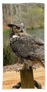 Great Horned Owl 1 Beach Towel