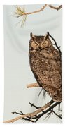 Great Horned Owl At Dusk Beach Sheet