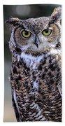 Great Horned Owl IIi Beach Towel