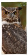 Great Horned Owl In A Tree 3 Beach Towel