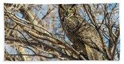 Great Horned Owl In Cottonwood Tree Beach Towel