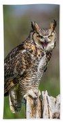 Great Horned Owl Screeching Beach Towel