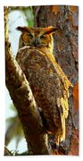 Great Horned Owl Wink Beach Towel