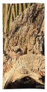 Great Horned Owlet Two Beach Towel