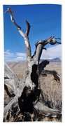 Great Sand Dunes National Park Fallen Tree Portrait Beach Towel