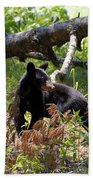 Great Smoky Mountain Bear Beach Towel