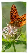 Great Spangled Fritillary On Bee Balm Beach Towel