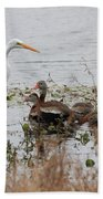Great White Egret And Ducks Beach Towel