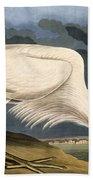 Great White Heron Beach Towel