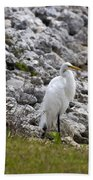 Great White Heron Race Beach Towel