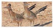 Greater Roadrunner Bird Beach Towel