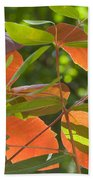 Green And Orange Leaves Beach Towel