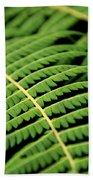 Green Bracken Beach Towel