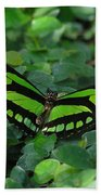 Green Butterfly Beach Towel