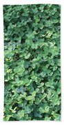 Green Clovers Beach Towel