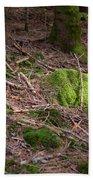 Green Covered Rock Beach Sheet