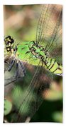 Green Dragonfly Macro Beach Towel