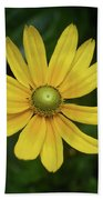 Green Eyed Daisy Beach Towel