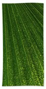 Green Fan - Radiating Lines And Scattered Polka-dots Beach Towel