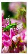 Green Grasshopper On Pink Flowers Beach Towel