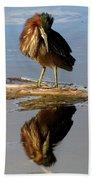 Green Heron Preening Beach Towel