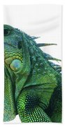 Green Iguana 1 Beach Towel