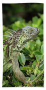 Green Iguana Vertical Beach Towel