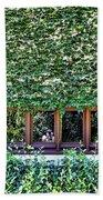 Green Ivy Window  Beach Towel