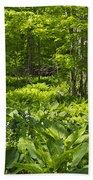 Green Landscape Of Summer Foliage Beach Towel