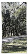 Green Lane With Live Oaks Beach Towel