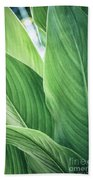 Green Leaves No. 2 Beach Towel by Todd Blanchard
