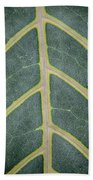 Green Structures Beach Towel