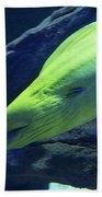 Green Moray Eel Beach Towel