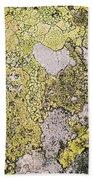 Green Moss On Rock Pattern Beach Towel