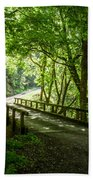 Green Nature Bridge Beach Towel