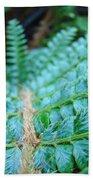 Green Nature Forest Fern Art Print Baslee Troutman  Beach Towel