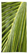 Green Palm Leaf Beach Towel